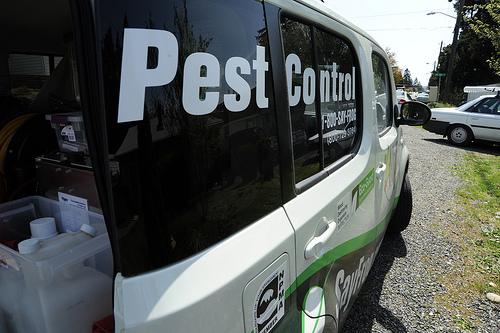 pest control photopin