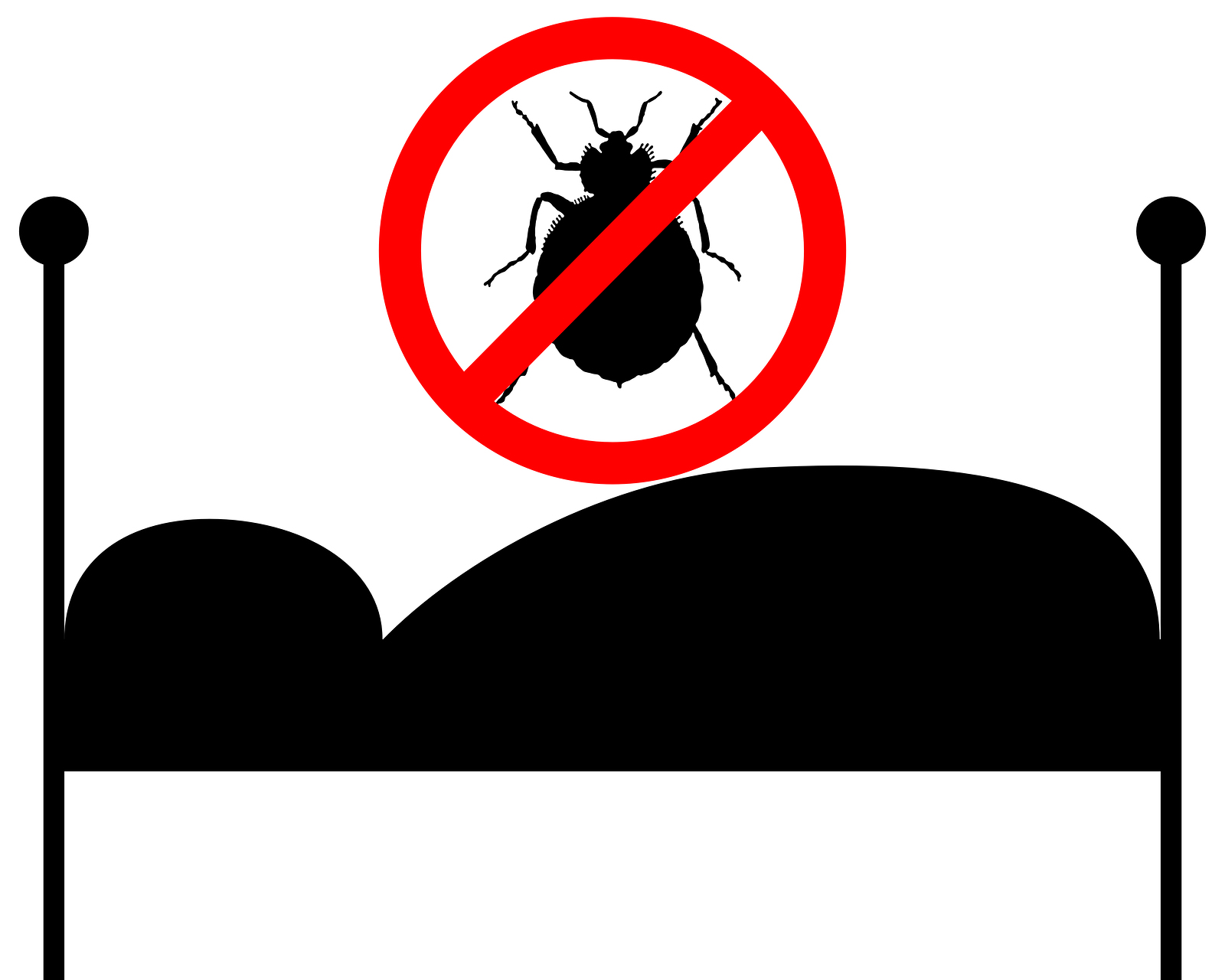 Bed Bugs No - The Dangers of DIY: Why You Shouldn't Treat Bed Bugs Yourself
