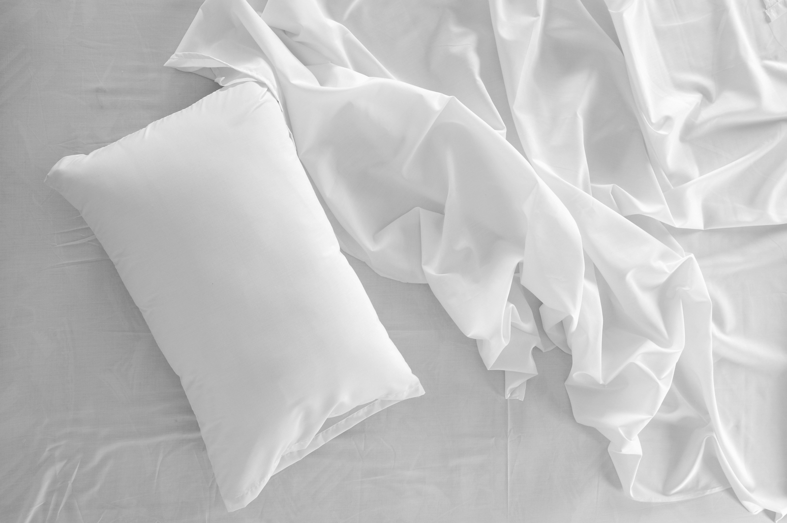 Do Mattress Covers Really Stop Bed Bugs Whitney Bogris