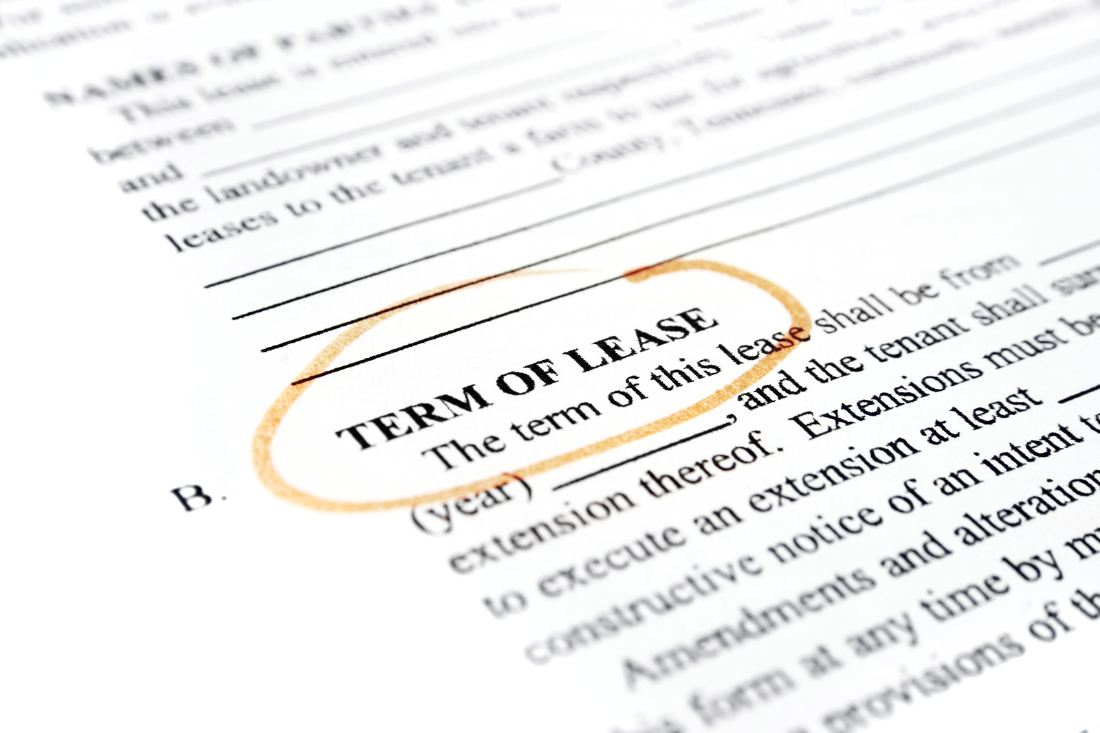 landlord tenant bed bug liability