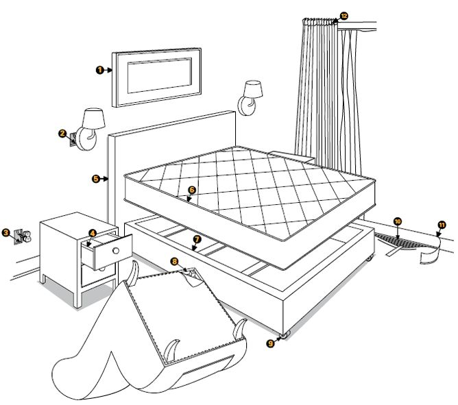 bed bug inspection photo