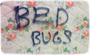 bb mattress