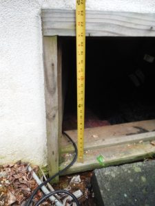 crawl space opening 225x300 - Attorney for a Termite Inspection Lawsuit in Maryland