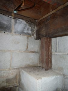 termite damage 225x300 - Attorney for a Termite Inspection Lawsuit in Maryland