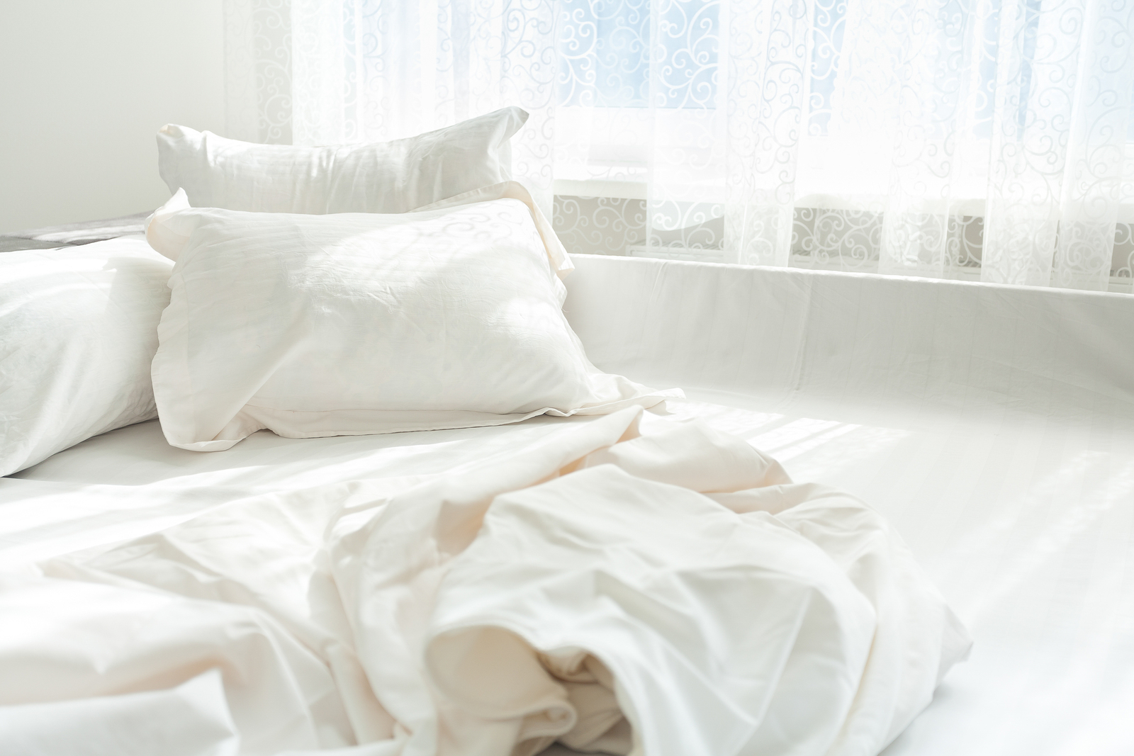 Are Bed Bugs Covered by Renters Insurance?