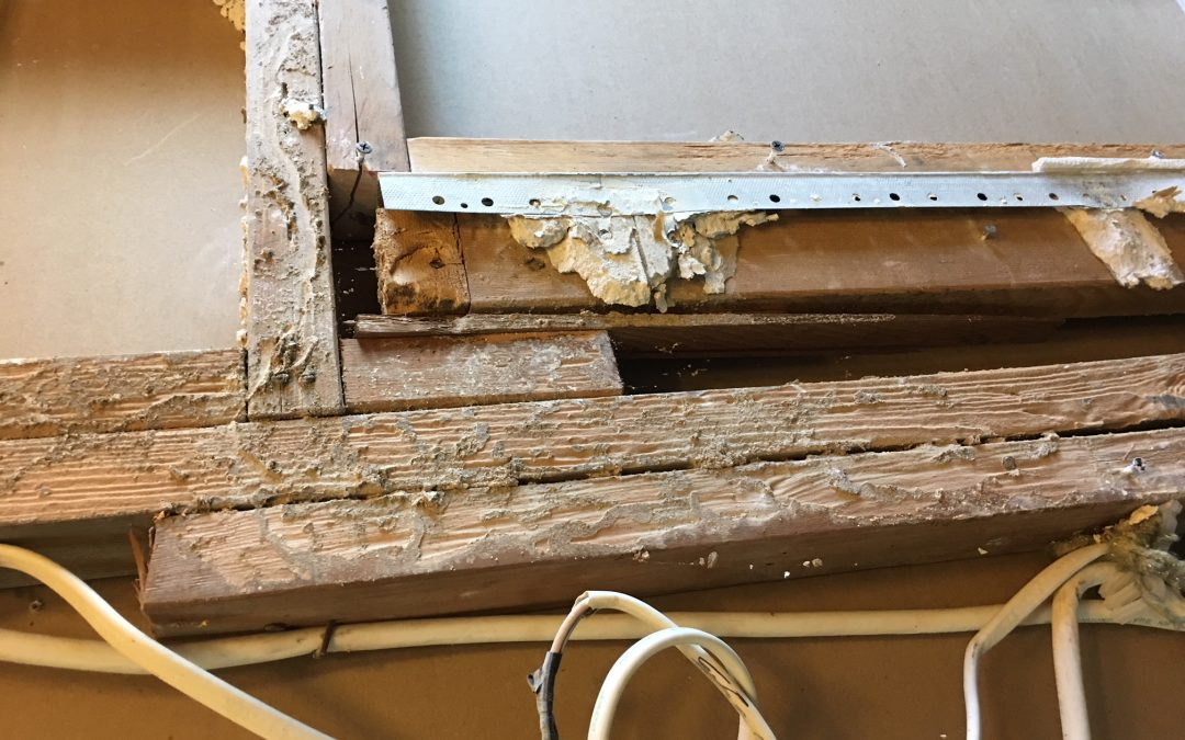 Lawyers to Help Sue House Flippers for Hidden Home Damage