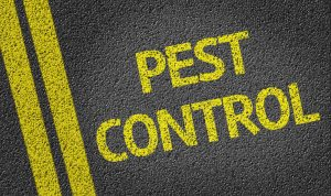 Pest Control 2 300x178 - $135,000 Baltimore Bed Bug Lawsuit Settlement
