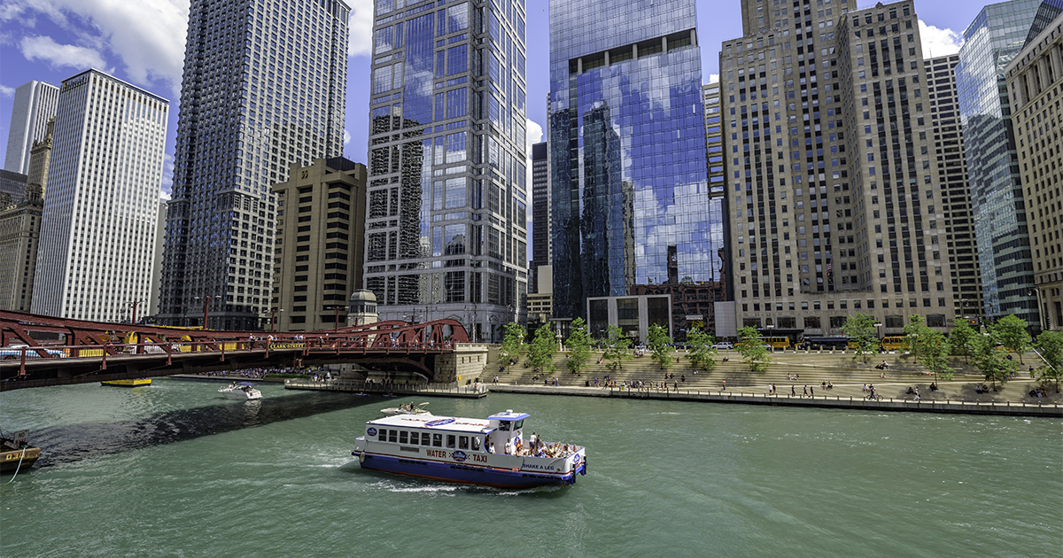 chicago - Chicago Bed Bug Lawyer