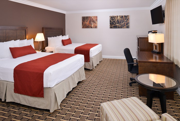 Chicago Hotel Bed Bug Attorney