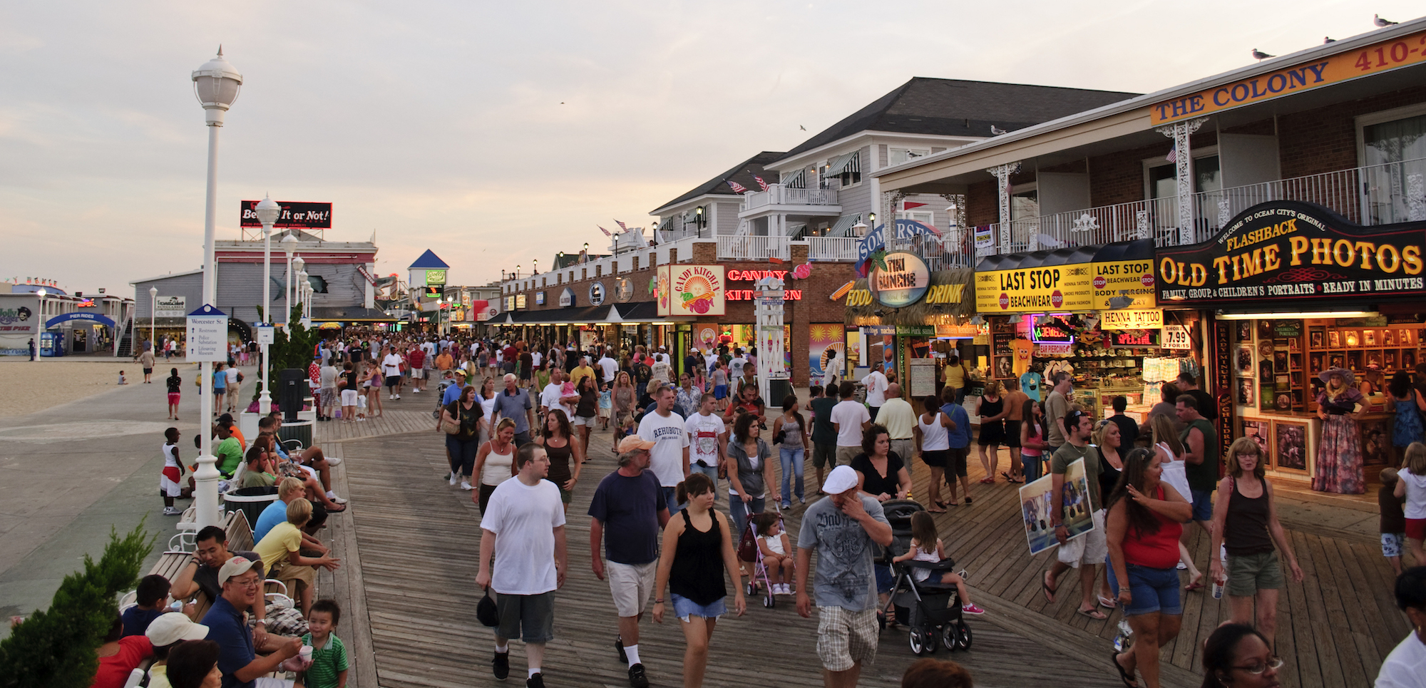 Ocean City MD Bed Bug Attorney