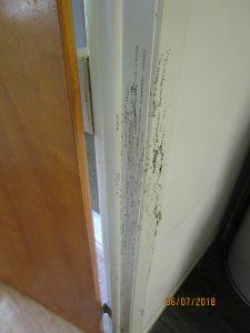 termite damage on door trim 1 225x300 - The Termite Inspector Missed Termite Damage