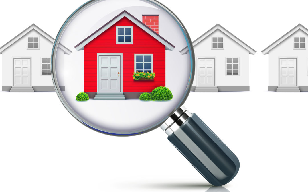 Attorney For A Home Purchase Termite Inspection In Maryland