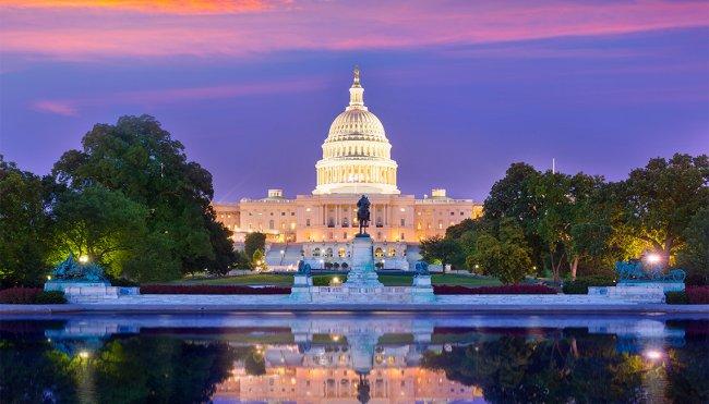 washington - Washington, D.C. Bed Bug Lawyer